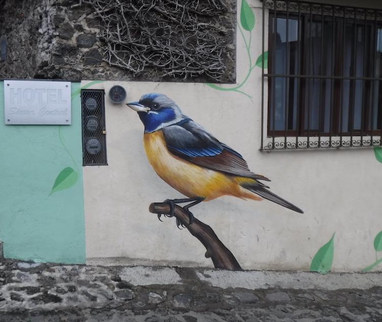 Wall bird.jpg